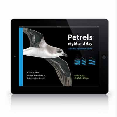 TSA2-iPad-Web