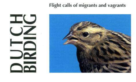 Flight calls of migratory birds