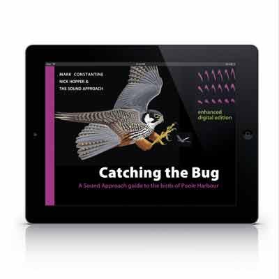 TSA4-iPad-Web